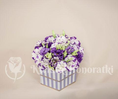 Flower box z eustomy