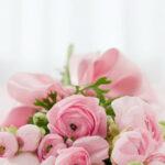 Ile kosztuje kurier kwiatowy?