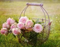 jak ułożyć kwiaty w koszu